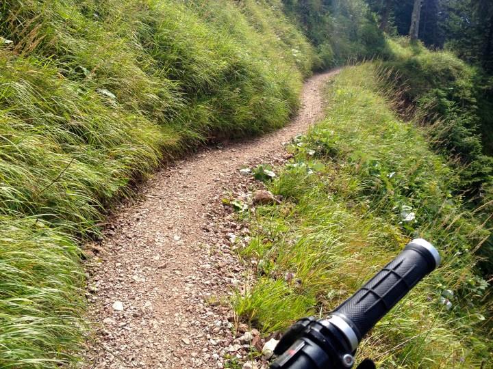 Flowiges Trailchen Richtung Rotmoos