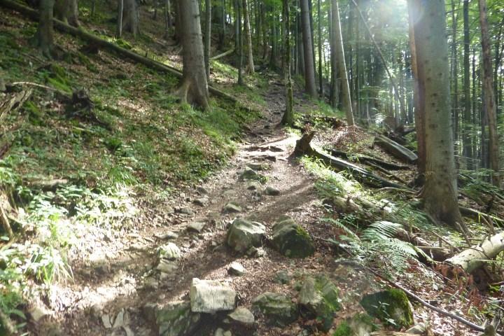 Verblockten Stellen im Zwiesel-Trail