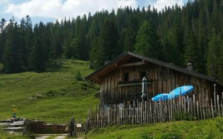 Oberbrunnalm Trails