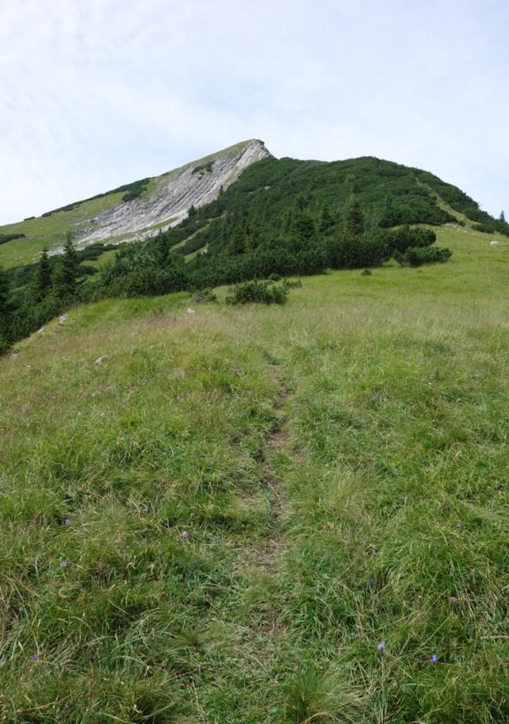 weitet sich das Gelände und über Wiesen und Latschenfelder geht's hoch...