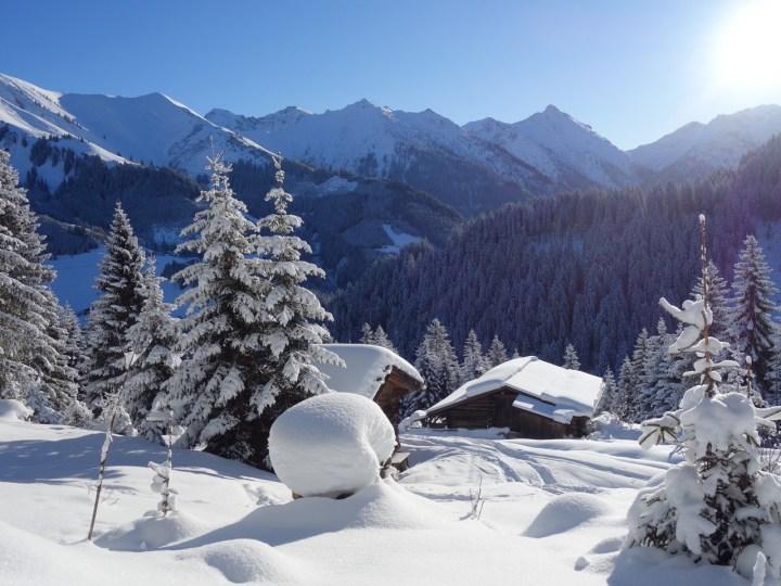 A frisch verschneites Träumchen...
