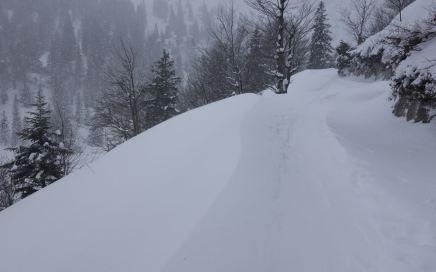 Herzogstand, Schlechtwetter-Skitour am Walchensee
