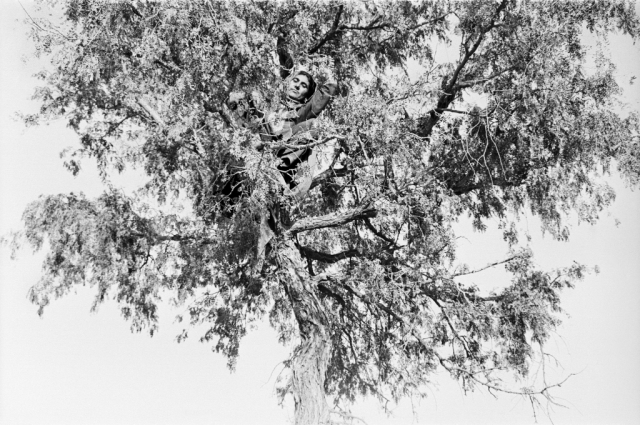 Izmat, from the series Notes from the Desert; Gauri Gill (b. 1970, India); 1999–2010; gelatin silver print, 61 × 76.2 cm; Purchase—Friends of the Freer and Sackler Galleries; Arthur M. Sackler Gallery, S2014.16
