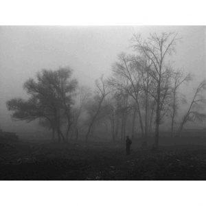 the Northern No. 14 (Dense Fog)