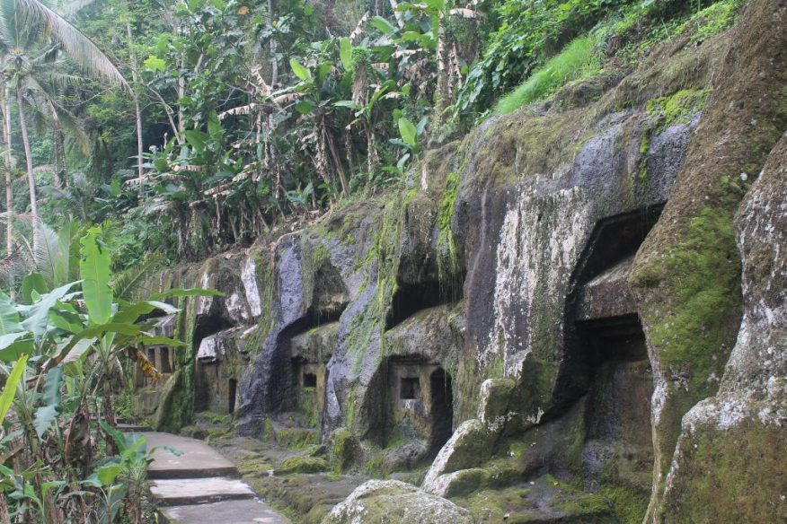 Rock cut caves with jungle foliage