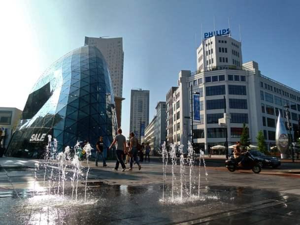 wietzaden bestellen in Eindhoven