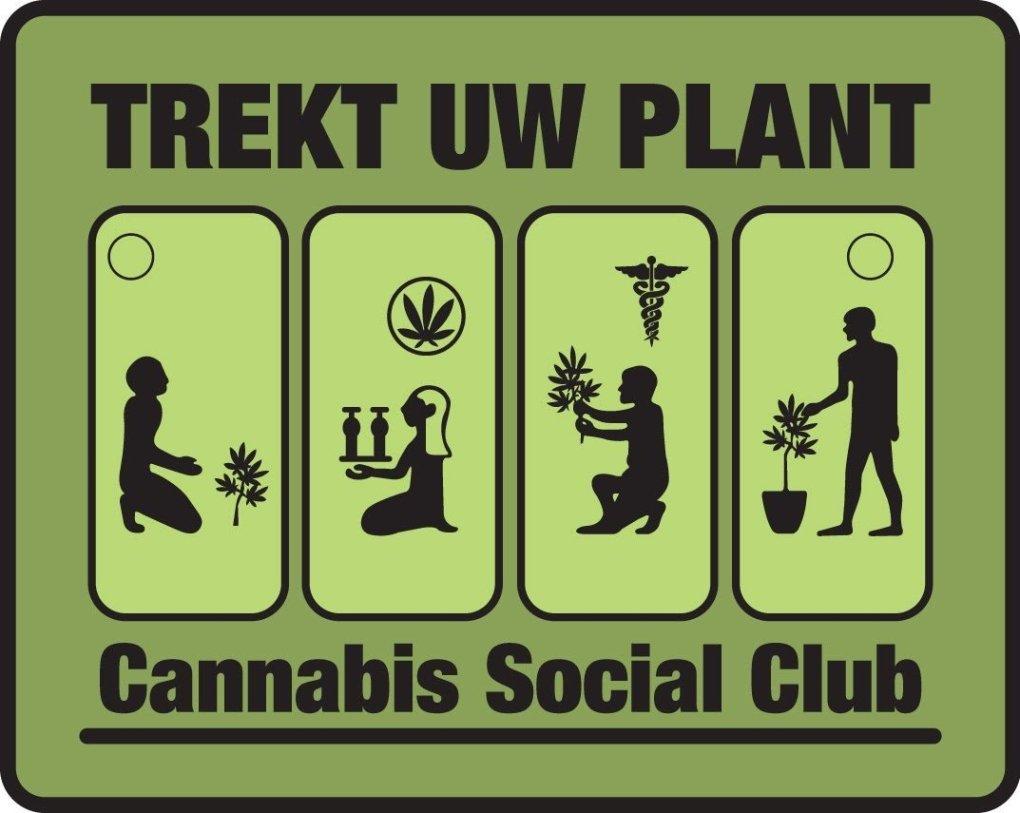 wiet kweken belgie