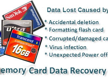 SD Memory Card Recovery Software Crack Free Download