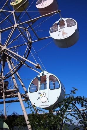 Ferrywheel at the amusement park