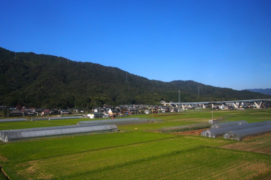 View from the train on the way to Miyazu