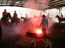 National Mounted Police Services de-spooking clinics at FSF!