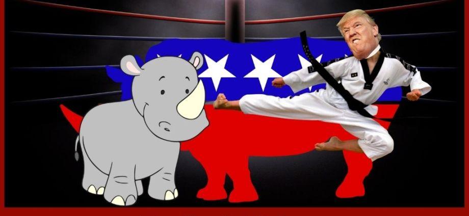 RINOs Threaten To Split the Republican Party