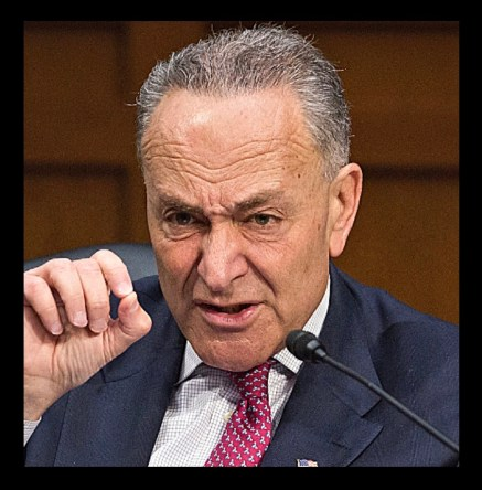 What did Chuck Schumer do?