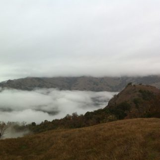 Fog over the Eel River