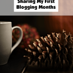 2016-Sharing My First Blogging Months