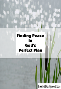 finding peace in God's perfect plan