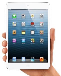 Win an Apple iPad Mini From The Steamy Kitchen!