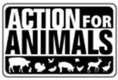 Action for Animals Free Vegan Starter Pack - Canada and US