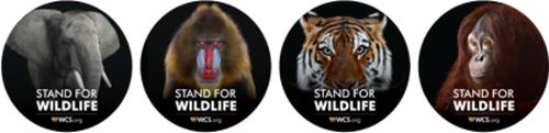 WCS Free Stand for Wildlife Stickers - US