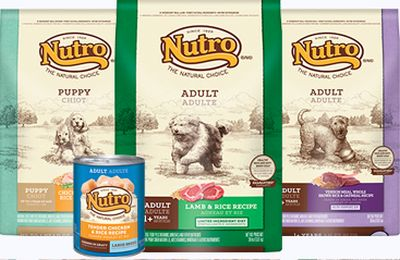 picture regarding Nutro Coupons Printable titled Petco Printable Coupon for a Absolutely free 4 towards 5 lb Bag of Nutro Doggy