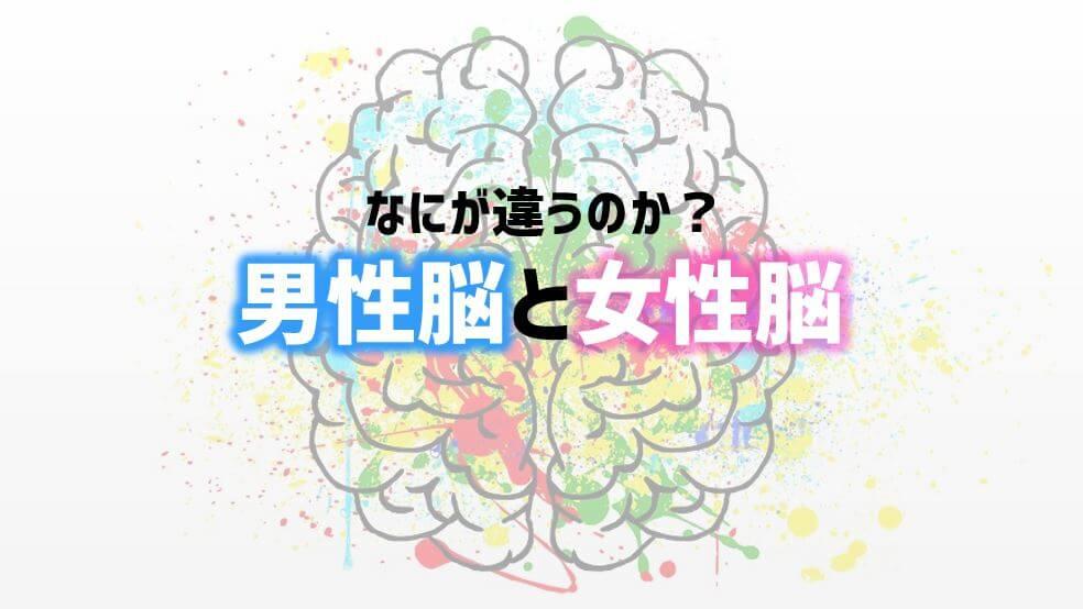 男性脳と女性脳 アイキャッチ
