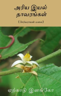 அரிய இயல் தாவரங்கள் (சேர்வராயன் மலை)  – ஏற்காடு இளங்கோ