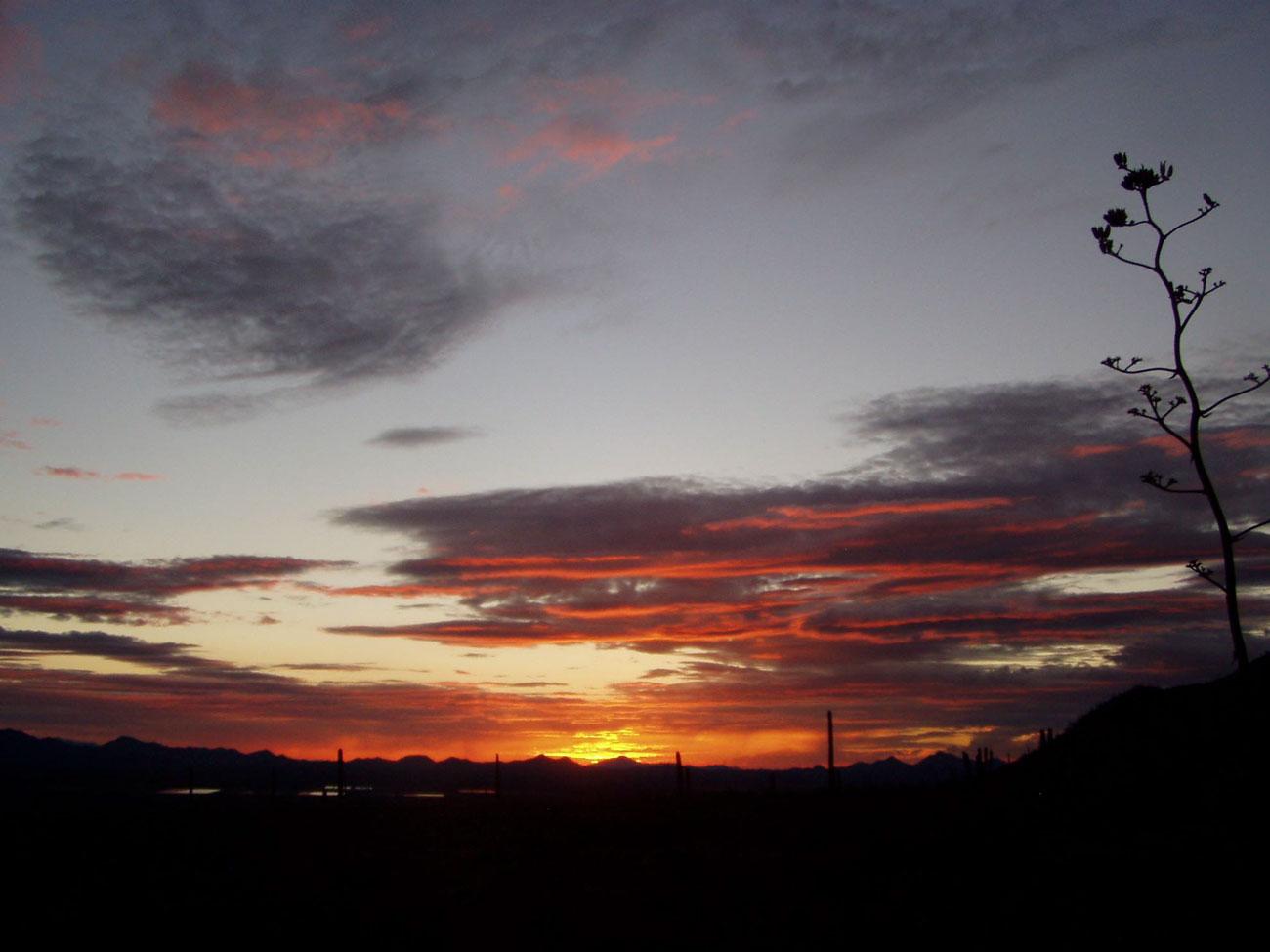 ASDM-Sunset01