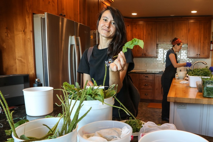 Sioux Chef team Member Tashia Hart, Culinary Ethnobotonist.