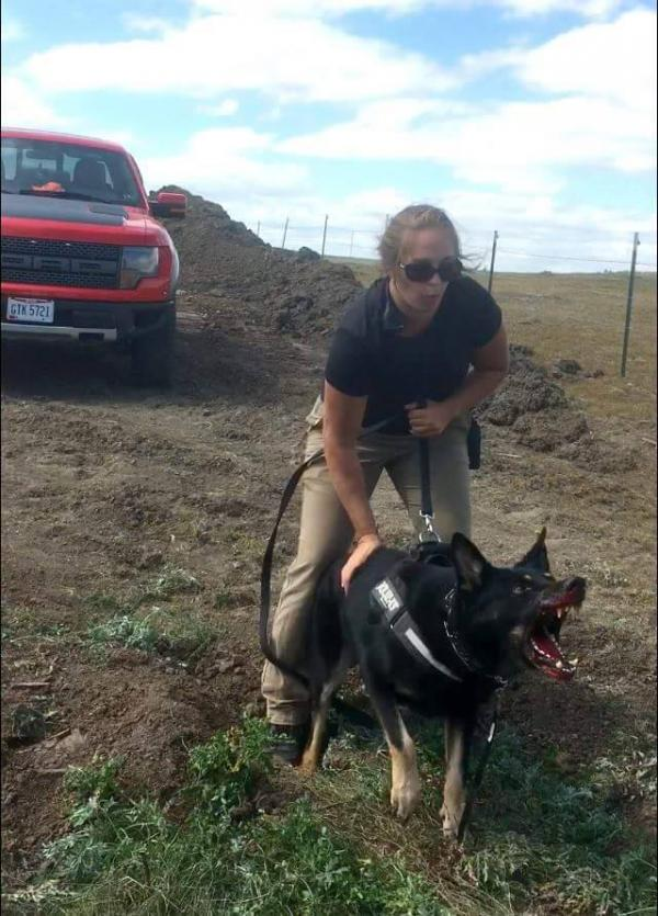 "Opponents of the Dakota Access Pipeline, or ""water protectors,"" were attacked with dogs, pepper spray on Saturday near the site of the pipeline route."