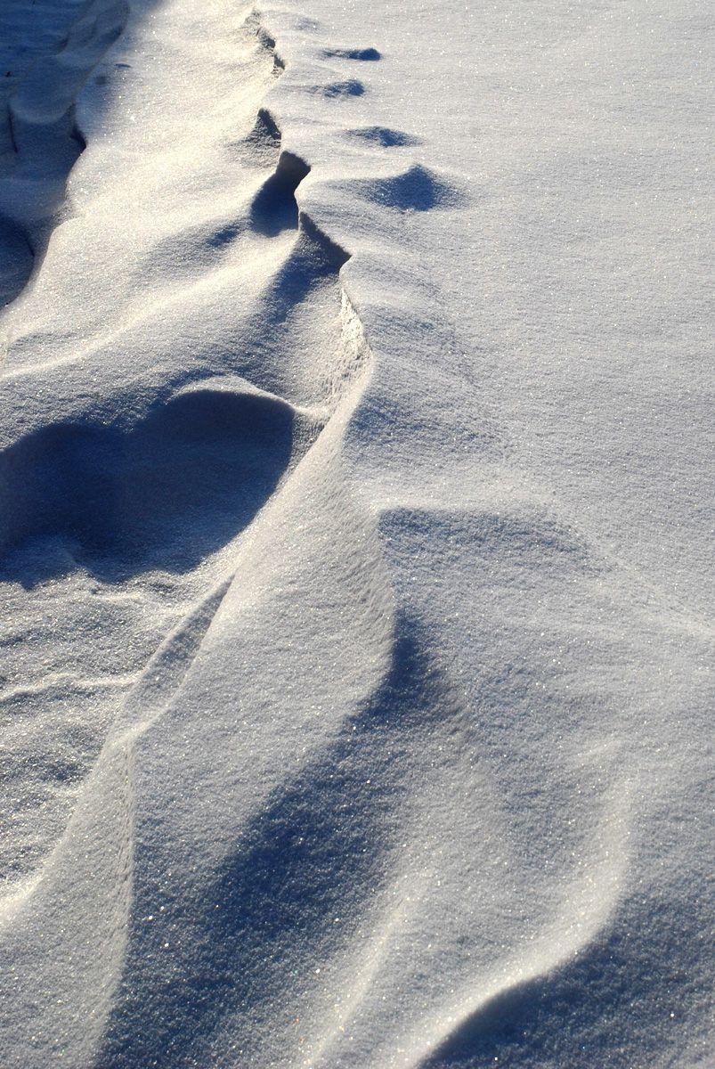 snowscapescrop