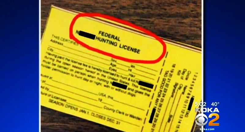Fake hunting license -- (KDKA screen grab).