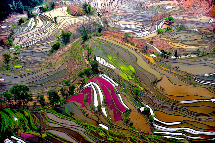 """Hani Terraces"". Images courtesy of the artist."