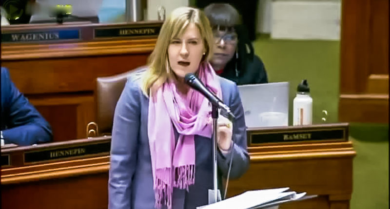 DFL House Minority Leader Melissa Hortman (screen grab).