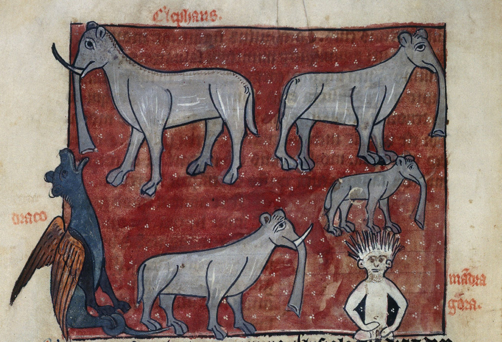 "Hugh of Fouilloy (<a href=""http://www.bl.uk/catalogues/illuminatedmanuscripts/record.asp?MSID=6512"">SloaneMS</a>). Elephants, Dragon, and Mandragora."