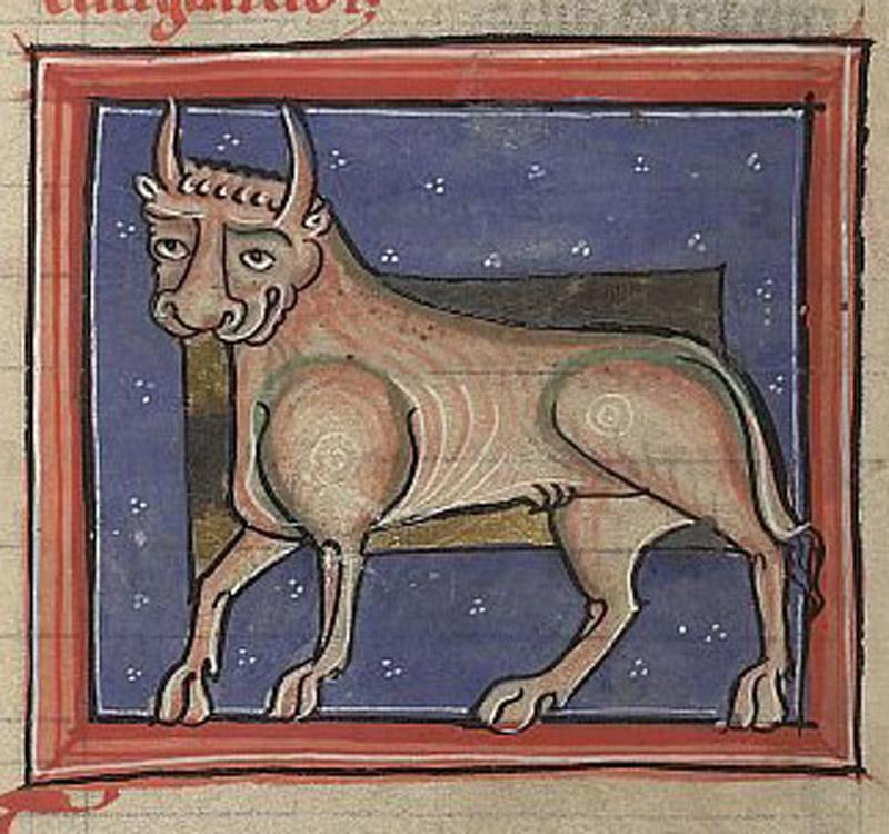 Bullock, British Library, Sloane MS 1975, Folio 80v.