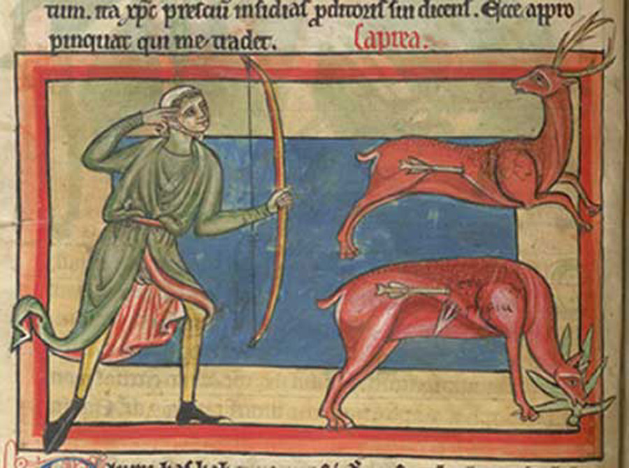 In the upper register, a stag is wounded by a hunter's arrow. Below, the stag eats the herb dittany, causing the arrow to come out. British Library, Harley MS 4751, Folio 14v.