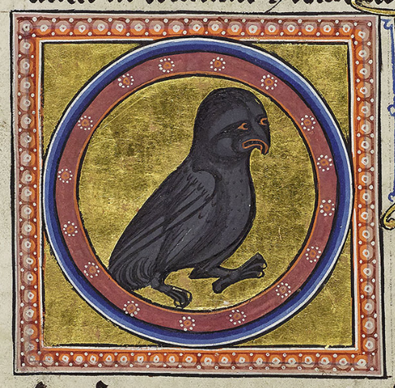 The bird is illustrated by its portrait in a roundel.