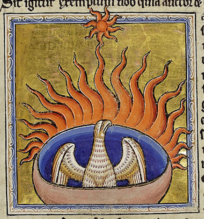 The phoenix turns to face the sun, beats its wings to fan the flames and is consumed. The image may equally show the bird rising from its own ashes, a symbol of the resurrection.