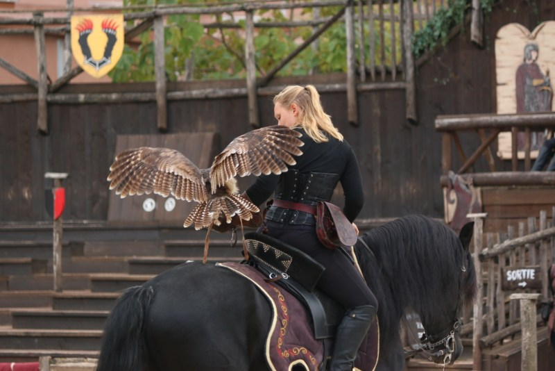 woman on horse with owl