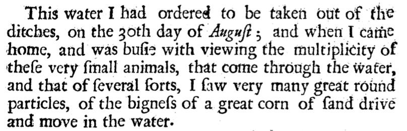 van Leeuwenhoek text