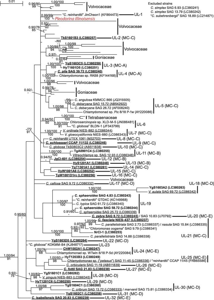 Nakada et al. 2018 Fig. 1