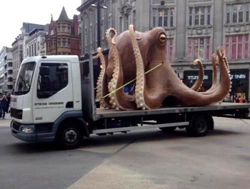 OctopusOxfordCircus_large