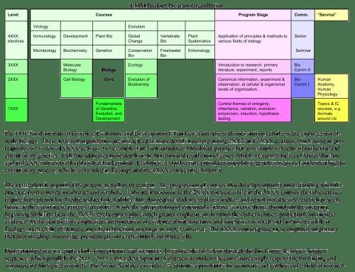 Biology-Program-Table