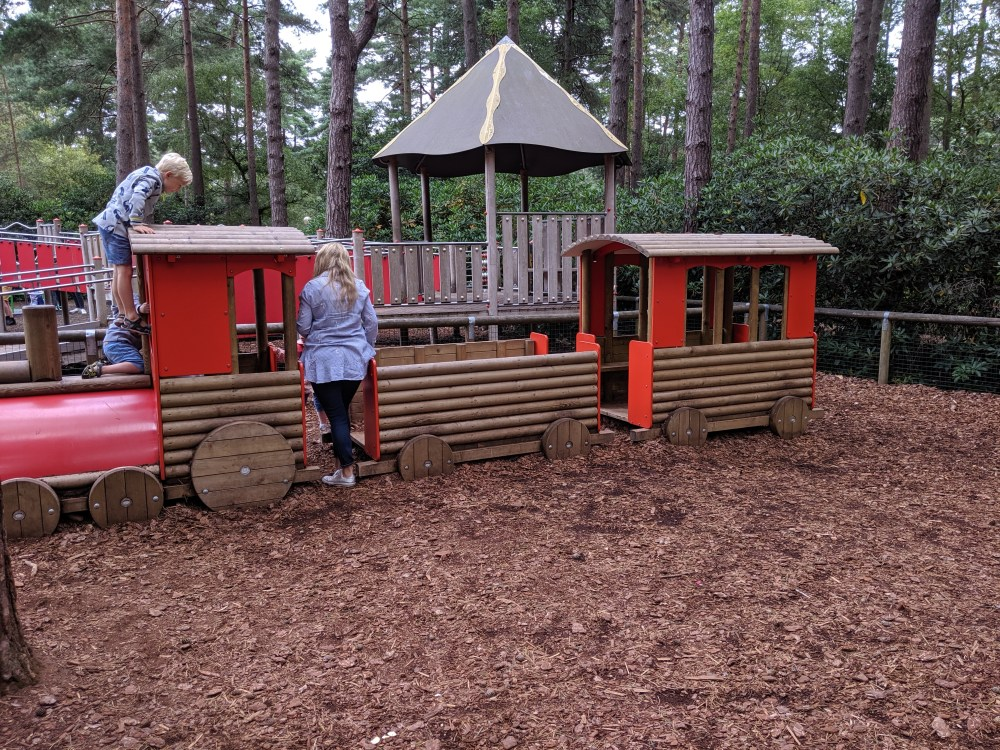 Review of Swinley Forest, Bracknell, Berkshire | Free Time with the Kids