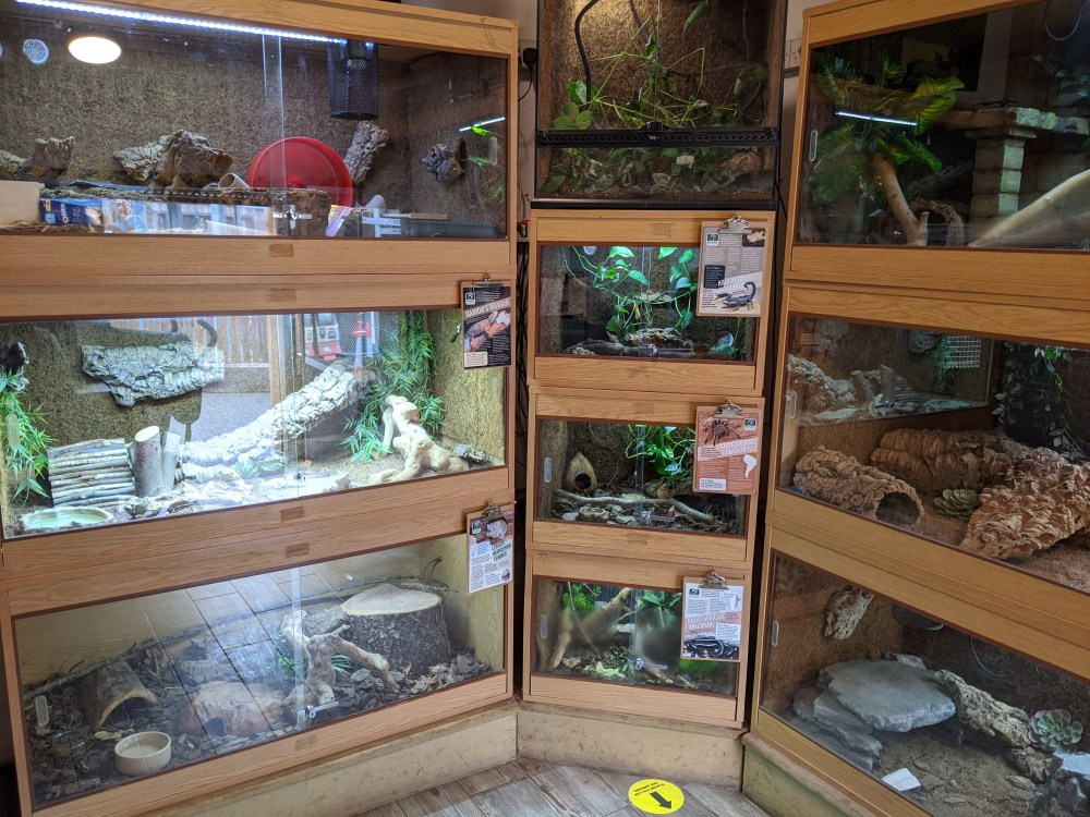 Cedars Nature Centre Review | Waltham Cross Zoo | Free Time with the Kids