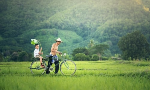 Field Recording Ambient Sound Cambodia