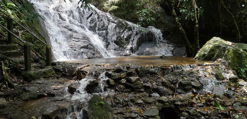 Rainforest Waterfalls Sounds And Waterfall Streams