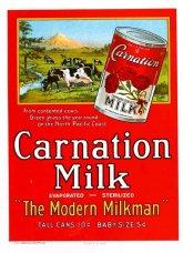 milk pic 04