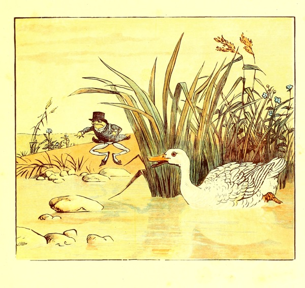 A free vintage children's book illustration of a marsh and animals