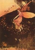 fairies pic 3